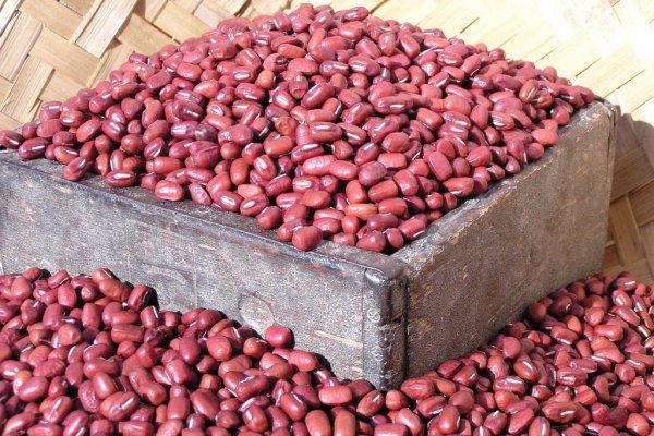 大納言紅豆為什麼叫大納言?關於京都和菓子的二三事
