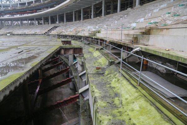 直擊大巨蛋內部!水泥生青苔 鋼樑生鏽的「廢墟」
