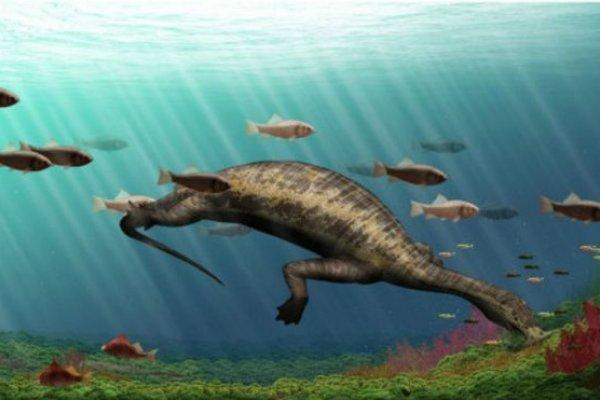 「錘子型下巴、柵欄狀牙齒」雲南化石揭示新種史前「怪異」爬行動物