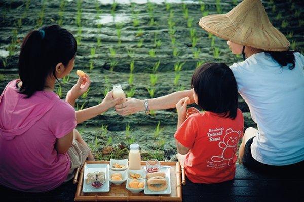 台灣人的稻米,連歐盟都來觀摩!拿下5屆冠軍米王的關鍵,是這樣的最美風景