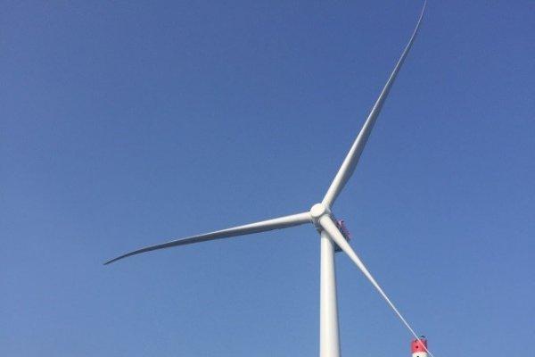 觀點投書:報告蔡總統 能源政策不能試試看!