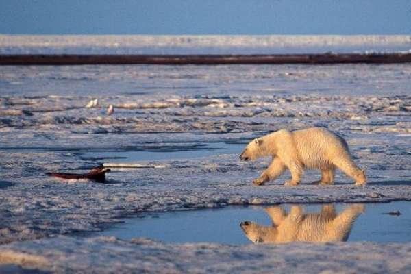 全球暖化一度中斷?英美科學家聯合研究結果:暖化趨緩是假象