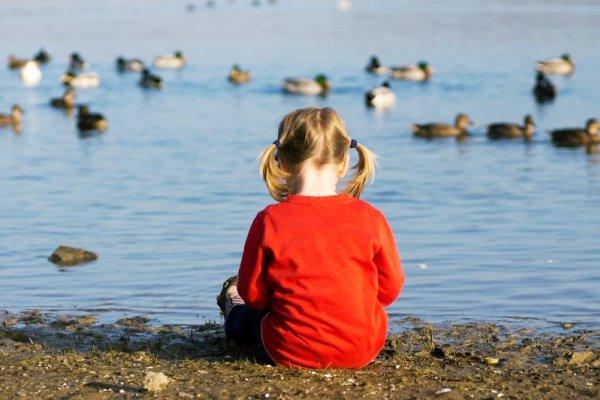 讀者投書:帶孩子是爸媽的責任,不是阿公阿嬤的!德國教養方式,值得台灣人反思
