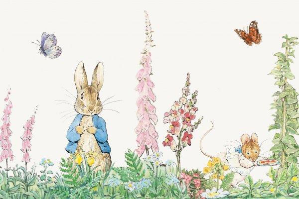 爸媽視線外,孩子才不可能繼續當「乖乖牌」!經典繪本《彼得兔》早就畫出真相
