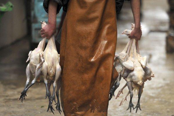 華爾街日報》肺炎已經夠讓人頭痛,湖南又現禽流感!中國經濟恐雪上加霜
