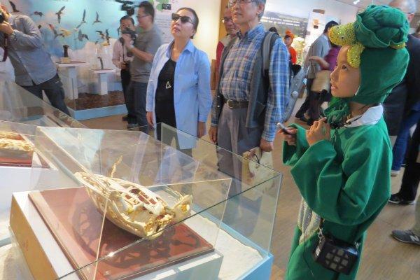 探索自然界奧秘 嘉縣自然史教育館展出「從海到陸」特展