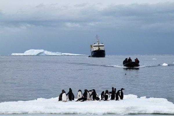 原來南極的景色是這樣!她踏上白色冰原,記錄下有錢都難造訪的美麗世界…