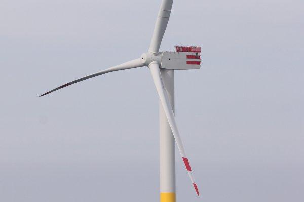 離岸風電5.8元費率擦肩過 外商喊撤之外還有4大影響...