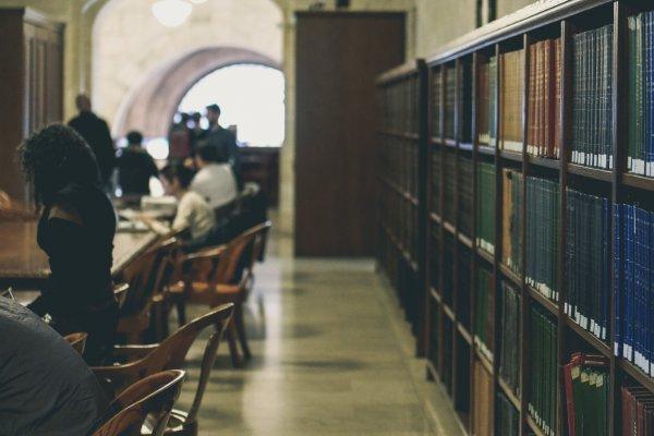 為何一位政大哲學系教授說,在美國留學時,覺得自己很聰明,一回台後就變笨了?