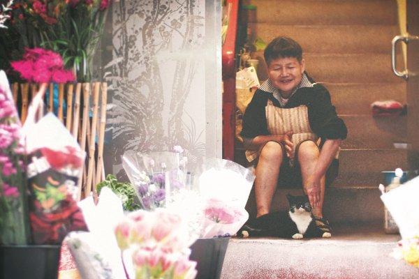 為何本來並不特別愛貓的她,會照顧流浪貓整整18年?背後的故事有洋蔥啊…