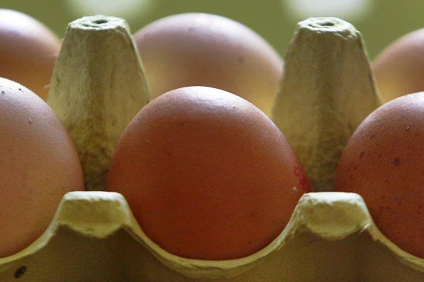 芬普尼毒雞蛋流向全聯超市 彰化縣府下令下架