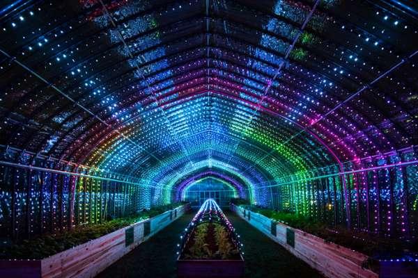 超炫七彩霓虹溫室在東京!高科技創意設施好拍又好玩,讓你摸摸蔬果就能演奏曲子!