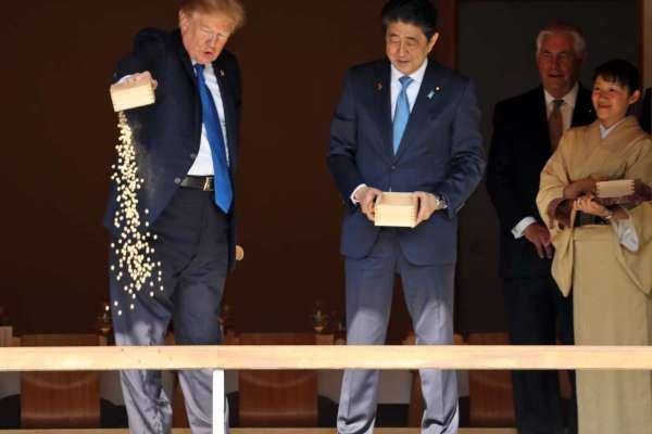 訪日插曲》讓錦鯉再次「尾大」?川普粗魯餵魚真相:是安倍帶頭先倒的啦!