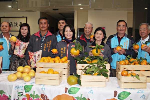 獅潭「橘莓戀」採果樂 一元桶柑限量採購