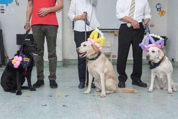 他在30歲那年意外失明,人生也失去方向…接觸導盲犬後生活竟有了全新轉機
