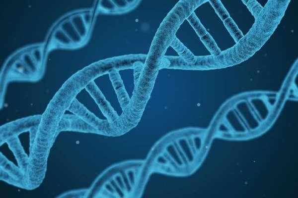 有基因缺陷的人,還該生小孩嗎?怕孩子遺傳家族精神病,醫師埋首破解「基因」的驚人秘辛