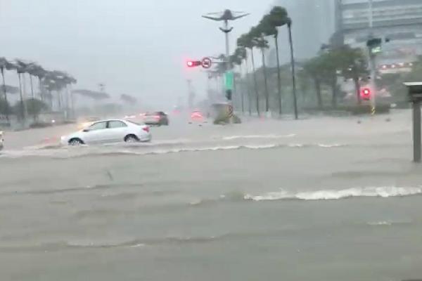 朱淑娟專欄:治水三要,首重提高城市滯洪功能