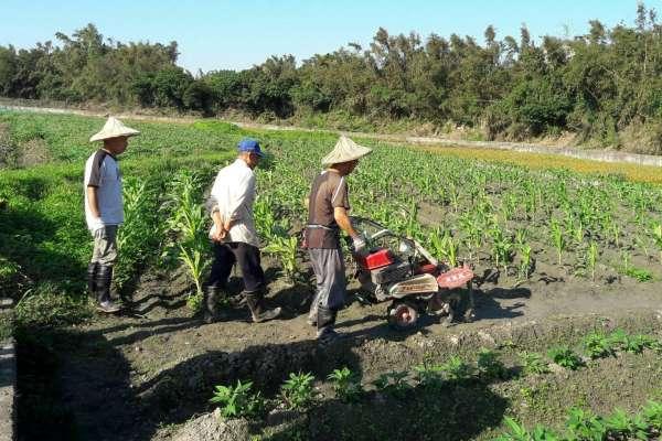 杜宇觀點:善用貿易規則翻轉台灣農漁業劣勢