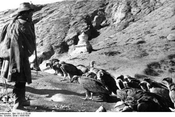 死後讓屍體回歸地球、給禿鷹吃,是一種榮耀!你看很驚悚,但內涵很純善的西藏文化-天葬