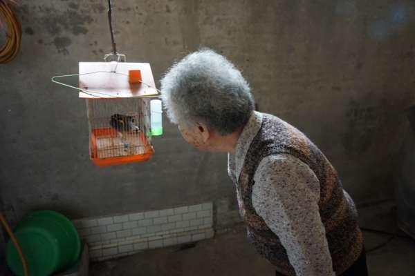別再讓獨居老人一個吃年夜飯…風窩推捐物資做公益,幫助孤獨長輩好過年