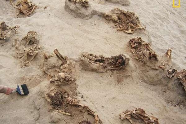 強行剖胸摘心、年幼駱馬陪葬…秘魯發現美洲最大兒童獻祭遺址,可能與500年前聖嬰現象有關