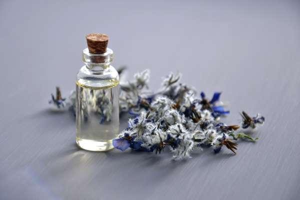 一瓶香水的原料竟可達200多種!這四間極具代表性的香水博物館,出國玩千萬別錯過
