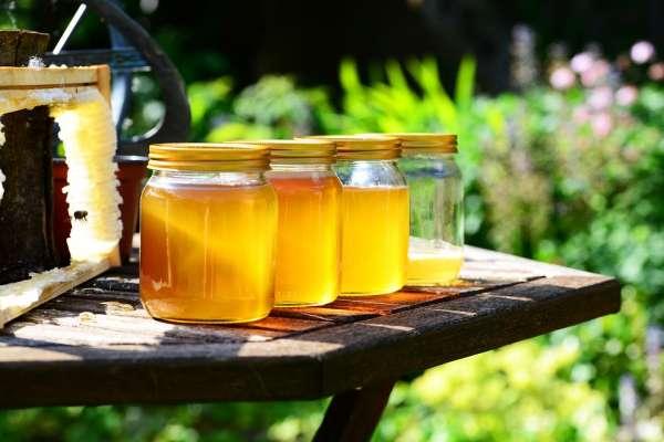 蜂蜜營養價值豐富,可以取代砂糖?營養師破解多數人的養生迷思,不只沒效還會爆肥