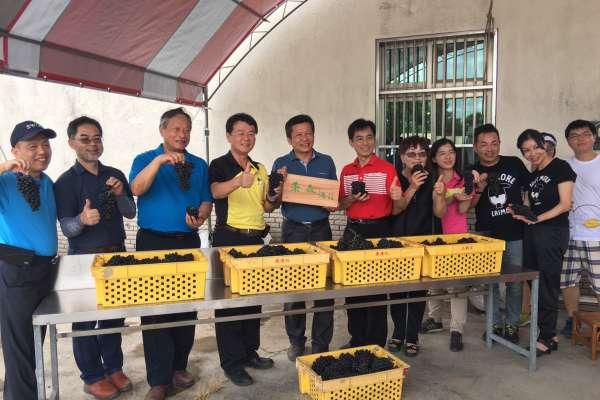二林西斗玩味釀酒趣味競賽 今夏另類紅酒微醺體驗