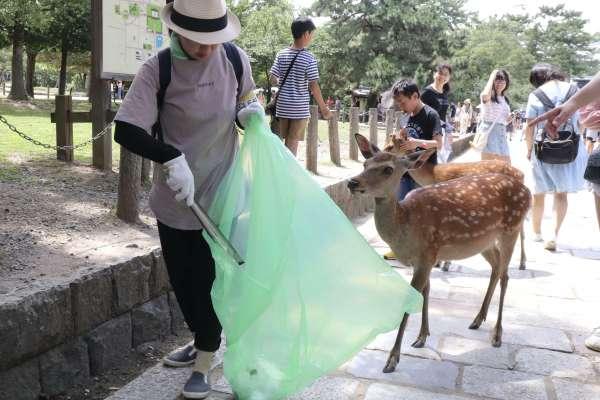 奈良鹿誤食塑膠袋無辜死亡,胃內垃圾纏成一團 獸醫心碎:牠們死前已瘦到見骨