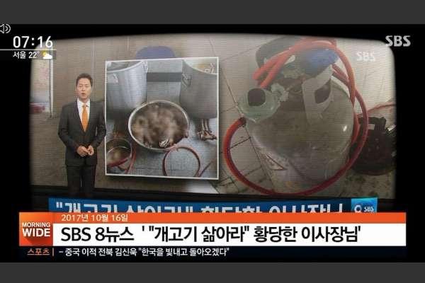 南韓想洗刷「虐待動物」污名,釜山最大狗肉市場將全面熄燈