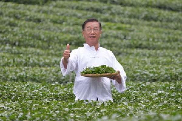林明溱化身 「茶伯」 代言茶業博覽會