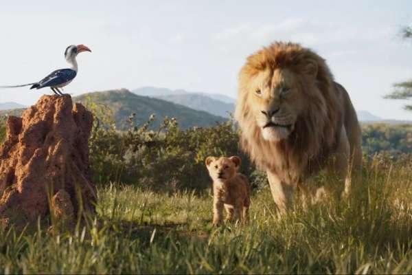 完美復刻卻遭批破壞童年!《獅子王》為何無法重新打動觀眾?