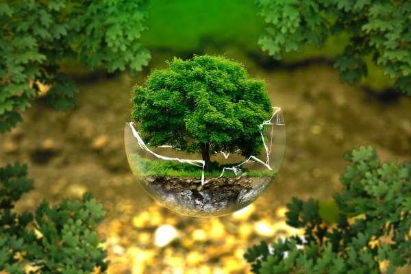 創業應該具有的「綠色思維」究竟是什麼?讓全球高手都紛紛響應的全局思考術