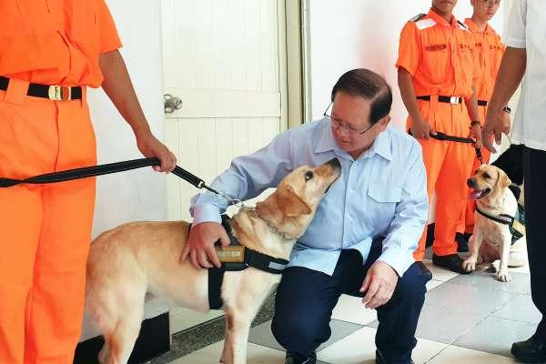 護國神犬守護國境!曾走入歷史的「海巡軍犬」再度上陣,打擊毒品與非洲豬瘟
