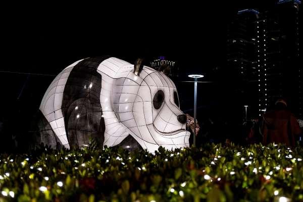 史上最長展期!「2020台灣燈會在台中」副展區璀璨登場