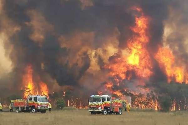 簡直奇蹟!澳洲野火肆虐山野焦黑,台灣媳婦山間小屋卻意外「完好無缺」,背後原因令人敬佩