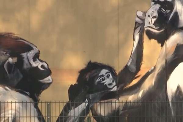 德國動物園疑似因為新年煙火引發火災!數十隻動物不幸命喪火窟