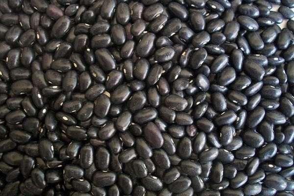 被稱為「豆類黑金」的黑豆,真的是減肥神器嗎?揭黑豆超神奇功效