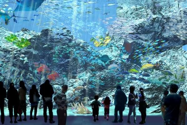 藝人陳芳語怒批噁心!水母斷肢、魟魚撞玻璃,Xpark捲虐待動物風波,官方出面說話了