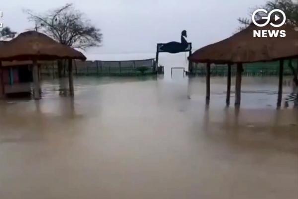 2000村莊慘遭滅頂!印度河水決堤,阿薩姆紅茶故鄉逾百萬人逃離家園