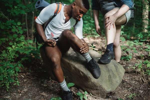 登山時被這些小蟲子叮咬,嚴重恐致命!達人公開3大危險生物,這招預防法必學