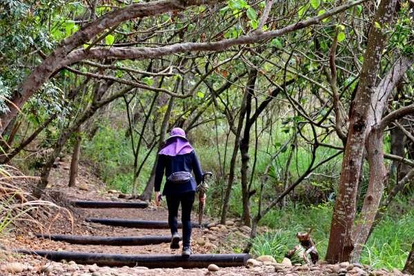 環保公園登山步道整建完成  環形縱走賞大肚之美