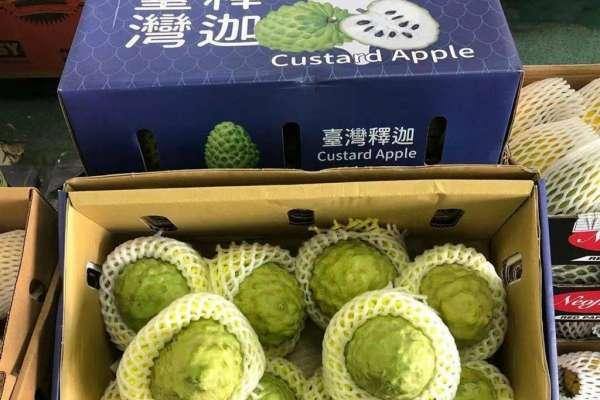 台灣水果不耐儲運,只能就近外銷中國?他們成功做好這技術,讓鳳梨釋迦新鮮銷往杜拜!