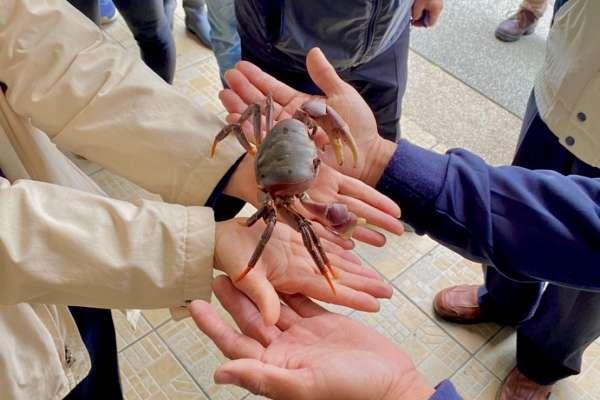 大安濱海樂園中市首例「海線環教」 6月份開放民眾申請