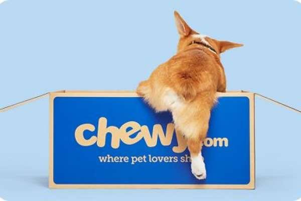 300字讀電子報》幫狗狗看病,比人更好賺!疫情寵物商機暴增1400億,電商Chewy苦熬10年終賺錢!