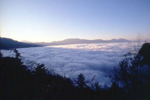 疫情在家悶壞了?阿里山6大熱門景點直播,夕陽、雲海、夜景盡收眼底!