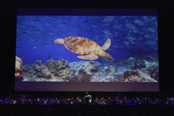 台達電零碳音樂會登場        以BBC史詩級巨作《藍色星球II》喚起海洋生態意識