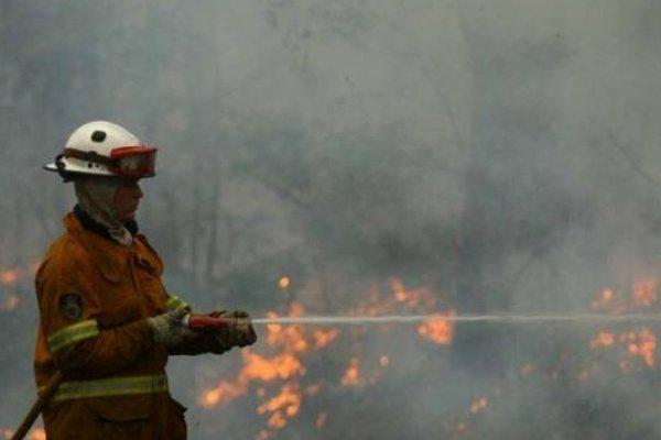 野火燒不盡 澳洲東南部化為煉獄