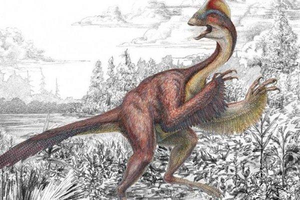 新品種恐龍 「地獄怪雞」現身