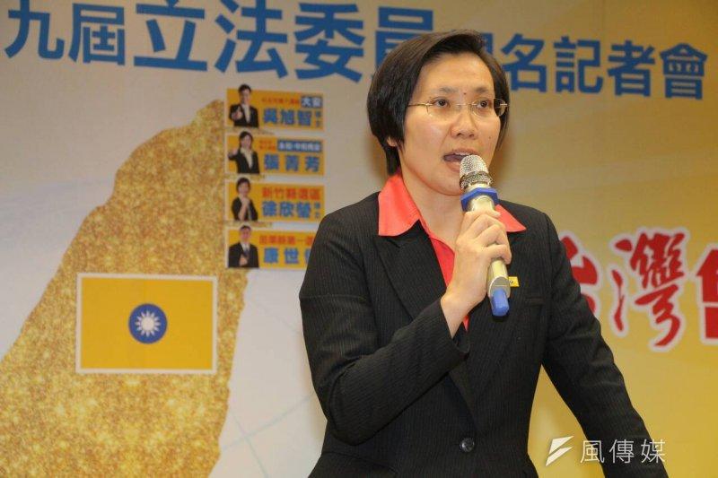 民國黨黨主席徐欣瑩公布立委提名。(資料照片,葉信菉攝)